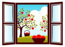Apple harvest Stock Image