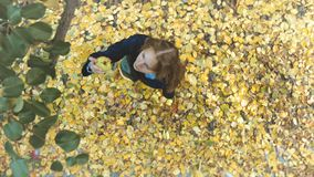 Apple harvesting among the yellow leafs. Slow motion. Top view. A girl with baskets of apples comes to a tree and tears off apples stock video footage
