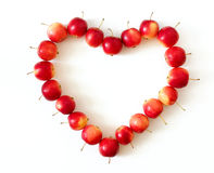 Apple heart. Everybody loves apples Stock Photos