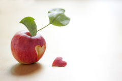 Apple Heart. Apple lost it's own heart Royalty Free Stock Images