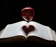An apple with heart shadow Royalty Free Stock Image