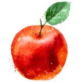 Apple-het malplaatje van het embleemontwerp fruit of voedselpictogram Stock Afbeelding