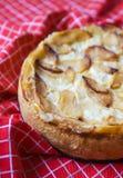 Apple homemade pie Royalty Free Stock Photos