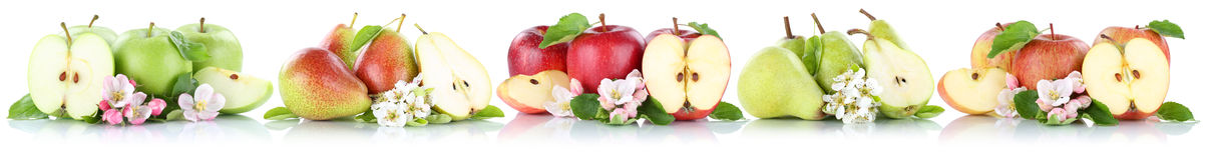 Apple i bonkret jabłek bonkret inkasowa owoc pokrajać z rzędu fru Fotografia Royalty Free