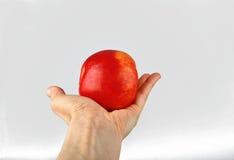 Apple i en hand royaltyfri bild