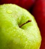 Apple i grönt och rött royaltyfri foto