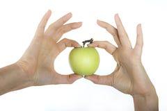 Apple i hand av flickan Royaltyfri Fotografi