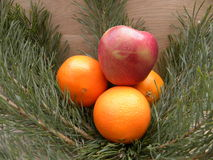Apple i pomarańczowy stawiający na jedlinowych gałąź Obrazy Stock
