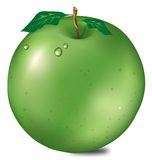 Apple illustration Royalty Free Stock Images