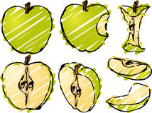 Apple illustration. Isometric 3d illustrtion of apples lineart hand-drawn look, bitten, core, halved, and quartered Royalty Free Stock Photos