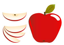 Apple illustration stock image
