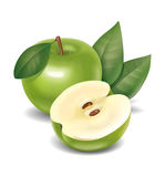 Apple illustration Royaltyfria Foton