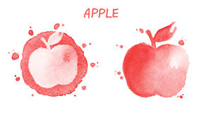 Apple Illustration d'aquarelle Photographie stock