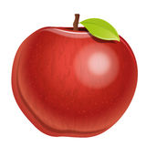 Apple. An illustration of an apple on a neutral background Stock Photography