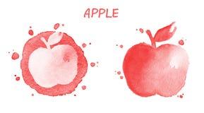 Apple Illustrazione dell'acquerello Fotografia Stock