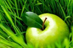 Apple im Gras Lizenzfreie Stockbilder