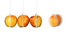 Apple Impact. Newtons Cradle with apple in motion Stock Image