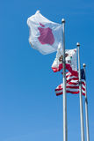 Apple Inc Flag. Waving in the wind against blue sky, at Apple Campus in Cupertino, California stock images