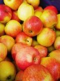 Apple inscatola il mercato Immagine Stock