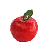 Apple isolated Royalty Free Stock Image