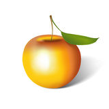 Apple Isolated (with Clipping Path) Stock Image