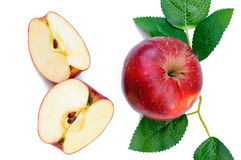 Apple isolerade, Apple på vit bakgrund Mogna Apple, ny Fru Fotografering för Bildbyråer