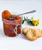 Apple jam with biscuits. Jam made from apples and biscuits Royalty Free Stock Photos