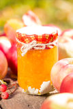 Apple jam and fruits on wooden table Stock Images