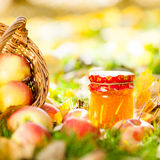 Apple jam in jar Royalty Free Stock Photo