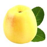 Apple jaune d'isolement avec le chemin de coupure Image libre de droits