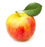 Apple jeden Obraz Royalty Free