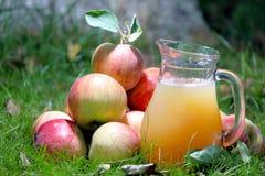 Free Apple Juice Royalty Free Stock Photography - 168362367