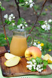 Apple juice Royalty Free Stock Photo