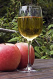 cider and apples Royalty Free Stock Image