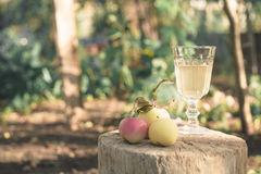 Apple juice in a glass on a wooden stand Royalty Free Stock Image