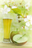 Apple juice in spring garden Royalty Free Stock Photo