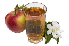 Apple juice still life. Glass of apple juice, apples and apple-tree flowers изолированняе on the white Royalty Free Stock Photography
