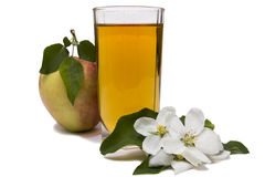 Apple juice still life. Glass of apple juice, apples and apple-tree flowers изолированняе on the white Stock Image