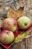 Apple juicy Στοκ εικόνα με δικαίωμα ελεύθερης χρήσης