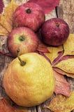 Apple juicy Στοκ εικόνες με δικαίωμα ελεύθερης χρήσης