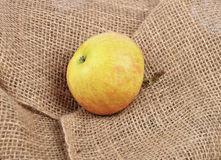 Apple on jute Royalty Free Stock Images