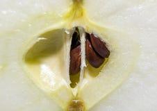 Apple kärnar ur makro Royaltyfri Fotografi
