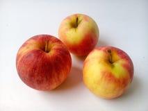 Apple-kader Stock Fotografie