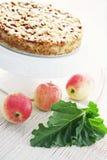 Apple kaka med rabarber Arkivfoto