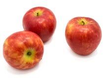 Apple Kanzi που απομονώνεται Στοκ Εικόνες