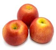 Apple Kanzi που απομονώνεται Στοκ φωτογραφίες με δικαίωμα ελεύθερης χρήσης