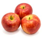 Apple Kanzi isolated. Three whole red Kanzi apples isolated on white backgroundn Royalty Free Stock Image