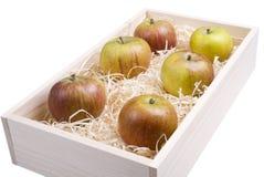 Apple-Kasten lizenzfreie stockfotos