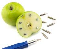 Apple klibbade med spikar, detaljen av en frukt med järn, hjälpmedel Royaltyfri Fotografi