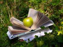 Apple of knowledge. Apple with books in the garden royalty free stock images